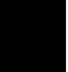 Anke Kotte