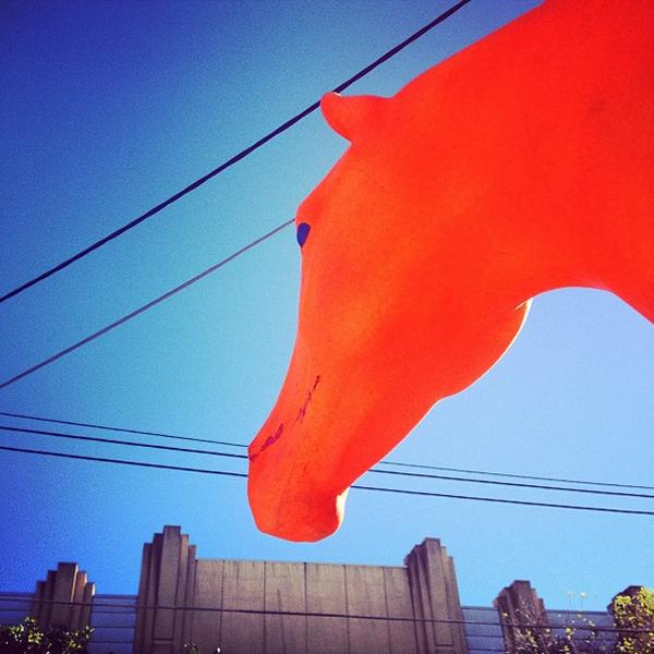 Orangefarbener Pferdekopf vor einem Gebäude.